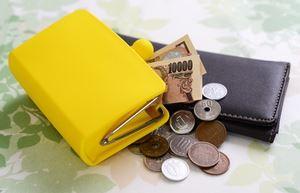 財布の色で金運アップ